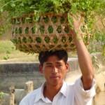 Basket of leaves, Thakudwara