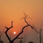 Sunset, Bardia National Park, Bardia